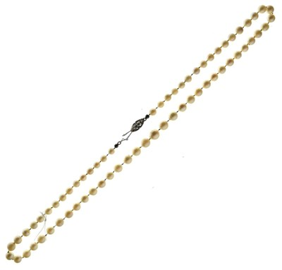 Lot 54 - Graduated row of cultured pearls